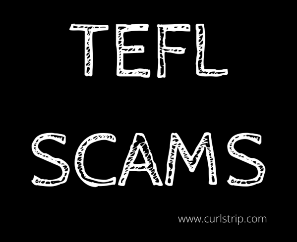 TEFL Scams Graphic
